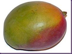 2011_10_18_mango
